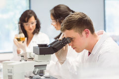 Studente di scienza che guarda tramite il microscopio in laboratorio Immagini Stock Libere da Diritti