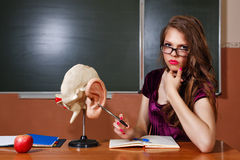 Studente eccellente in anatomia dell'aula Fotografia Stock
