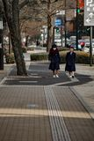Studente giapponese nella via Fotografie Stock