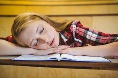 Studente grazioso che dorme sul taccuino Immagine Stock