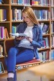 Studente grazioso che si siede sul libro di lettura della sedia in biblioteca Fotografia Stock