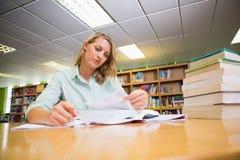 Studente grazioso che studia nella biblioteca Fotografie Stock
