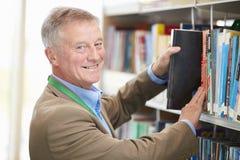 Studente maturo maschio Studying In Library immagini stock libere da diritti