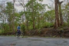 Studente sulla bicicletta in sentiero forestale di dandeli fotografie stock