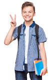 Studente teenager del ragazzo Fotografia Stock