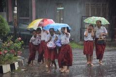 Studenten aan regen worden blootgesteld die stock foto's