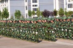 Studenten die militaire opleiding doen Royalty-vrije Stock Foto's