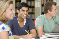 Studenten, die zusammen in einer Bibliothek studieren lizenzfreie stockbilder