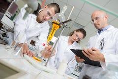 Studenten en leraar die in laboratorium experimenteren Stock Foto