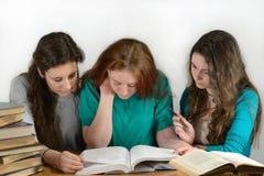 Studenten lesen ein interessantes Buch Lizenzfreie Stockbilder