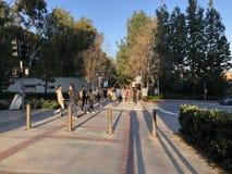 Studenten op campus van Universiteit van Californië, Los Angeles Royalty-vrije Stock Foto