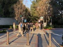 Studenten op campus van Universiteit van Californië, Los Angeles Royalty-vrije Stock Fotografie