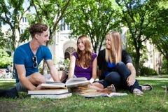 Studenten op campusgrond Stock Foto's