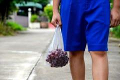 Studenter som går för att returnera, räcka bärande påsar för frukt och mat Arkivfoto