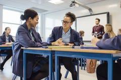 Studenter som tillsammans arbetar i kurs royaltyfri bild