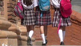 Studentesse con gli zainhi Fotografie Stock Libere da Diritti