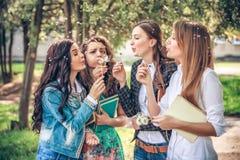 Studentesse di college che soffiano i semi del dente di leone Fotografia Stock Libera da Diritti