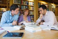 Studenti adulti che studiano insieme nella biblioteca Fotografia Stock