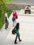 Studenti in campus universitario fotografia stock