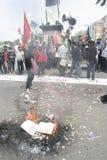 Studenti che bruciano esposizione di carta Immagine Stock Libera da Diritti