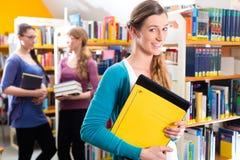 Studenti che imparano nella biblioteca Fotografie Stock