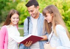 Studenti che leggono un libro al parco Immagini Stock