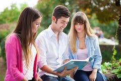 Studenti che leggono un libro all'aperto Fotografia Stock Libera da Diritti