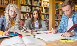 Studenti che scrivono le note allo scrittorio delle biblioteche Fotografia Stock Libera da Diritti