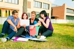 Studenti che si siedono nell'erba, imparante Fotografia Stock