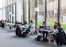 Studenti che studiano alla biblioteca Immagine Stock Libera da Diritti