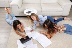 Studenti che studiano a casa fotografia stock libera da diritti