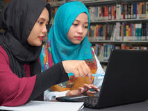 Studenti che studiano in una biblioteca fotografia stock libera da diritti