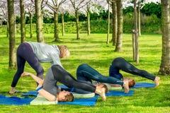 Studenti d'aiuto dell'insegnante di yoga con il halasana Immagini Stock Libere da Diritti