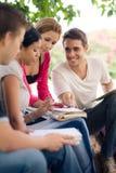 Studenti di college che fanno i homeworks in sosta Fotografia Stock