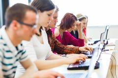 Studenti di college che si siedono in un'aula Immagine Stock Libera da Diritti