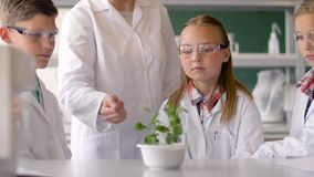Studenti ed insegnante con la pianta a classe di Biologia video d archivio
