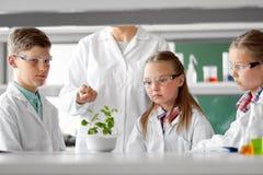 Studenti ed insegnante con la pianta a classe di Biologia Immagine Stock Libera da Diritti