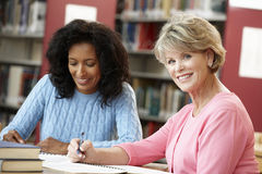 Studenti maturi che lavorano nella biblioteca Immagine Stock Libera da Diritti
