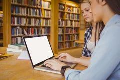 Studenti seri che per mezzo del computer portatile Fotografie Stock