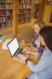 Studenti seri che per mezzo del computer portatile Immagini Stock