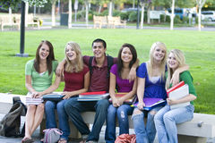 Students on a Bench Stock Photos