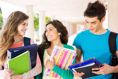 Students in campus. Young group of students in campus Stock Image
