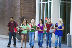 Students Carrying Books Royalty Free Stock Photo
