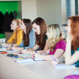 Students in class Royalty Free Stock Images
