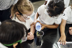 Students in a class learning planting experimental. Group of diverse kindergarten students learning planting experiment in science laboratory class stock image