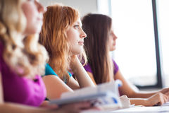 Students in classroom - young pretty female college student. Sitting in a classroom full of students during class color toned image; shallow DOF Royalty Free Stock Image