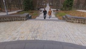 Students with coffee goes to university through park. Two young students walks together in autumn park. Young guys with coffee up the stairs and goes to stock footage