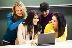 Students discussing project Royalty Free Stock Photo