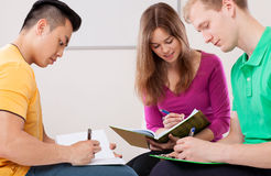 Students doing homework Royalty Free Stock Photos