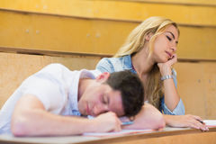 Students falling asleep during class. During class Stock Photo